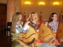 V Міжнародний конкурс виконавців на українських народних інструментах ім. Гната Хоткевича