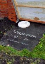 Корбан похоронил свою собаку рядом с мемориалом погибшим студентам