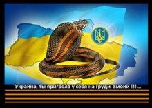 Вести из Краснодарского края