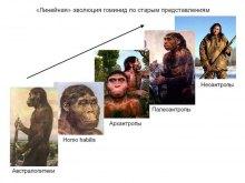 Космические Боги с созвездий Большого Пса и Ориона ч.3