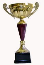 Кубок Бандери – 2011 в рідному селі Провідника!