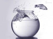 Эгоизм – хорошо или плохо