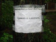 Активісти вимагають збереження лісу у Коцюбинському