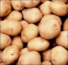 Картофель подорожал в Николаеве вдвое – за неделю!