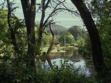 Дума про вмираючі озера нашої юні