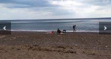 ''При Украине такой печали не было'': в Крыму запустили квест ''найти отдыхающего'', показав пустые пляжи полуострова