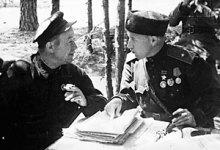 Радянський партизанський рух і комуністичне підпілля.