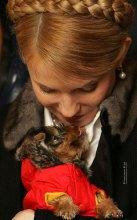 Тимошенко запрягает ''третий сектор''