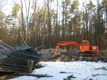 Скандальний ліс під Коцюбинським: місцева влада проти референдуму