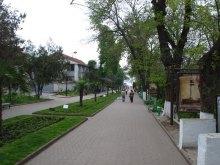 В Одессе захватывают не только пляжи, но и водную гладь. А Костусев, Гончаренко, Марков здесь при чем?