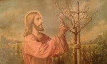 Чи не засохне дерево душі народної, чи ще принесе плоди Духа і Правди!