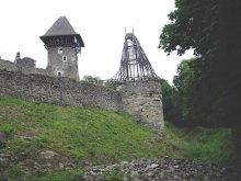 Легенди і історична правда про Невицький замок та його околиці