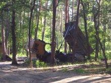 Принцип дерибану скандального лісу: земля лише для ''своїх''