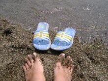 Плани літньої відпустки