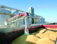 Зернова міль